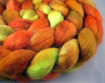 Garden Gourds - Handpainted BFL Wool Roving, 4 oz.