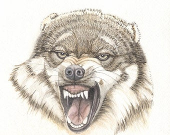 Wolf, 9x9 original watercolor painting, wolves, art & collectibles, earthspalette