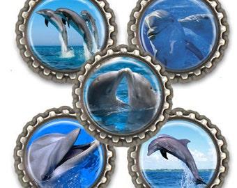 Dolphin Fridge Magnets Office Locker Magnet Set Dolphin Magnet Set