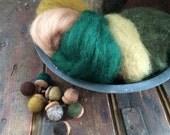 NEW Aspen Forest Sampler - Needle Felting Wool -Wet Felting Wool-Nuno Felting