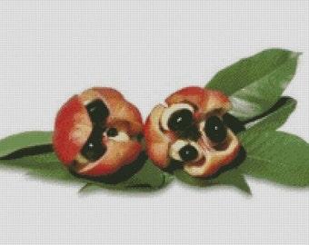 Ackee Fruit Cross Stitch Pattern