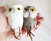 1 Brown OR 1 White Owl with Real Feathers and Wire, Supply for Fall or Halloween, Please choose 1 Option