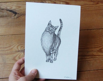 Bearded Cat A5 Print - Choose 1 or Set of 3 - Cat illustration