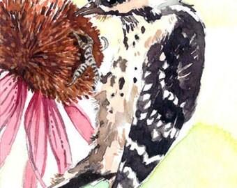ACEO Limited Edition 1/25- Bird's favorite, Bird art print, Woodpecker, Summer garden, Gift idea for bird lovers, Bird art