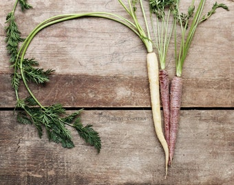Rainbow Carrots, Farmhouse Kitchen Wall Art, Rustic Photograph, Country Decor, Fine Art Print, Food Photography | 'Three Carrots'