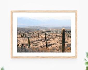 Cactus Printable Wall Art Instant Download Photo Landscape Desert Wall Decor Modern Wall Art Printable Art Large Poster Photograph Cactus