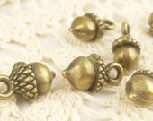 Whimsical Acorn Charms, Antiqued Bronze (6) - A114