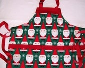 Red and Green Santa Apron for Child - Size 5-6 Santa Holiday Apron