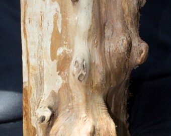 Large Willow Burl Wood Wedge - For Crafts and Woodworking Projects - Raw Material Wood