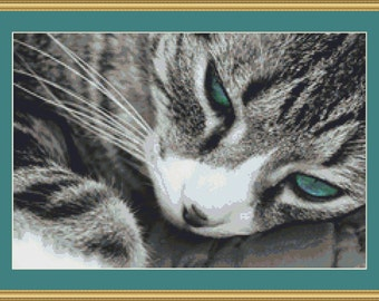 Whiskers Cross Stitch Pattern