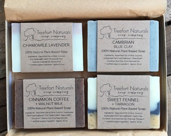 Soap Gift Box - 4 bar Soap Set, All Natural Soap Gift, Holiday Gift, Hostess Gift, Teacher Gift