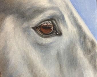 Original Nicolae Equine Art Nicole Smith artist Horse oil painting gray eye soul 6x6 boxed canvas