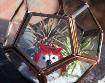 GeoBronze - Super Modern Glass/Metal Dodecahedron Terrarium with Air Plants and Glass Owl