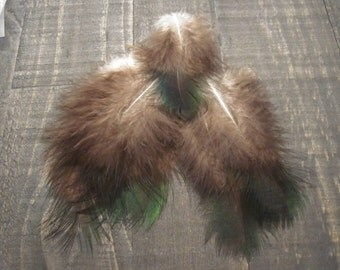 Green Peacock Marabou Feathers ~ Cruelty Free