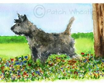 Brindle Black Cairn Terrier Dog  Art Print 'Spring Flowers' #59