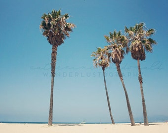 Venice Beach Print, California Photography, Los Angeles print, palm tree wall art, Surf Decor, Boho Style, Pastel Large Print