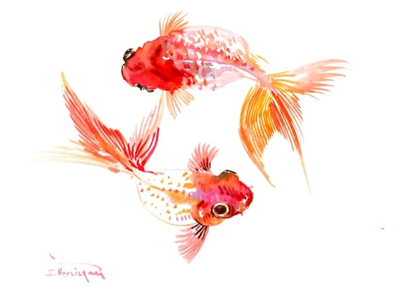 Two koi fish two goldfish original feng shui one of a kind for Original koi fish