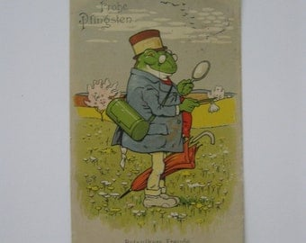 Vintage Post Card - Botanist Joy - Dressed Frog Investigates Nature - Used - 1903