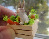 Dollhouse Miniatures - Wooden Vegetable Crate with Gray & White Rabbit / Bunny - Easter
