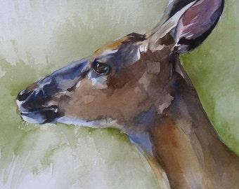 Deer, original watercolor, moose, wildlife, Canadian, wilderness, hunting