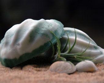 Seaweed and Sea Salt Soap