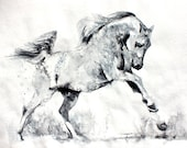 Freedom. Print of a wild white horse. Running horse. Wall art, wall decor, digital print.