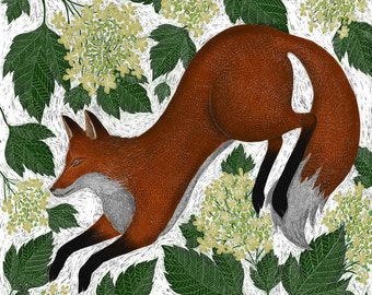 Signed Fine Art Print - Fox & Guelder Rose