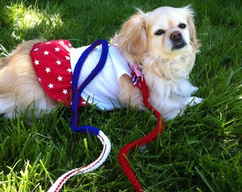 Patriotic Dog Leash for Small Dogs,  Election Dog Leash, Democratic leash, Republican leash. Red, White and Blue Dog Leash ADL02