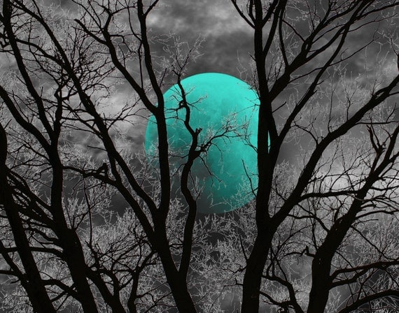 Black White Teal Decor Teal Moon Tree Decor Teal Bedroom