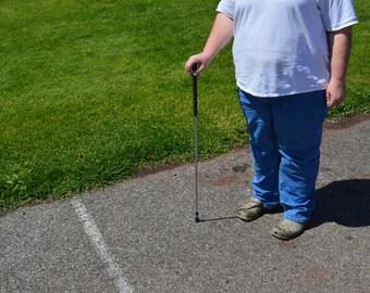 Walking Stick, Hiking Stick, Cane