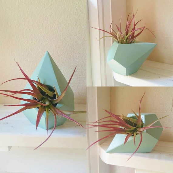 Geometric air plant holder, teardrop mini planter
