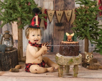 First Birthday table prop Photo Prop Stump for our Log bed Newborn photography prop hand made night stand Table