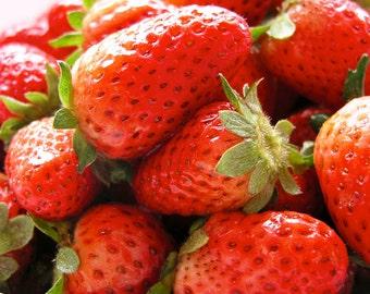 Strawberry Mango and Aloe Moisturizing Conditioner