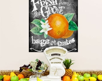 Fresh from the Grove Oranges Wall Decal - #54443