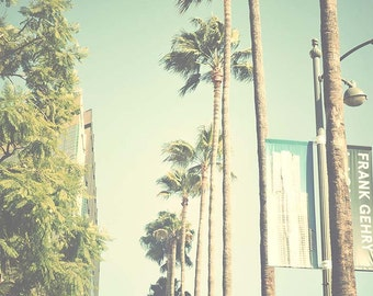 California Photography, Los Angeles Palm Trees, Fine Art Print, Hollywood, Museum of Art