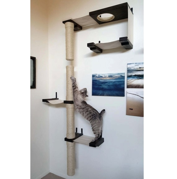 Skyscraper complex cat hammock shelves for Bookshelf cat tower