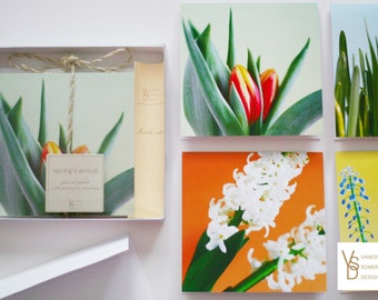 "Note Card Set, ""Spring's Arrival"" Fine Art Photo Note Card Set, Botanical Photography, Floral Note Cards"