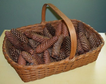 50 plus Long Narrow Pinecones Basket Filler