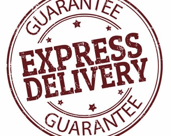 Express Delivery Shipping
