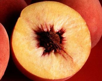 Peach Kernel Oil 2 oz.