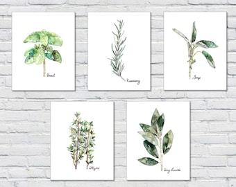 Herb Print Set of 5 - 8x10 Watercolor Prints, Herb Watercolors, Kitchen Decor, Botanical Print, Print Set, Herb Prints, Herb Painting, Herbs