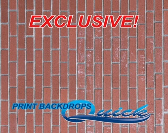Messy Brick - EXCLUSIVE - Vinyl Photography Backdrops