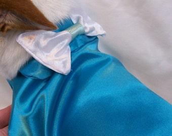 Dog, Dog Clothes, Dog Tuxedo, Dog Dress, Dog Accessories, Pet Clothes