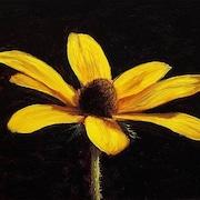 WildflowersVntg