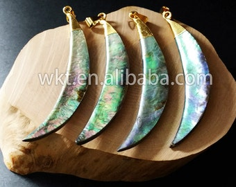 WT-P522 Wholesale Natural abalone shell pendants long tusk shell abalone pendants
