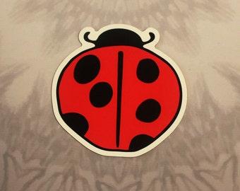Ladybug Outdoor Magnet
