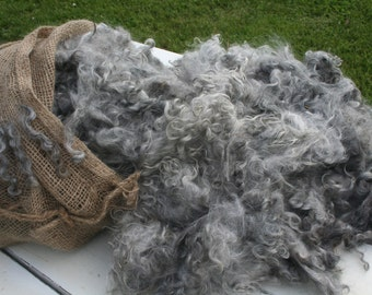 Mohair fleece, yearling, washed, charcoal grey, 1 pound