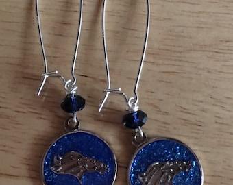 Denver Broncos glitter Earrings
