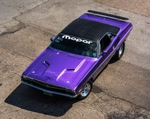 Poster of Dodge Challenger Left Front Plumb Crazy HD Print