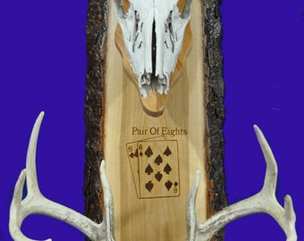 Deer Hunting ~ European Mount Plaque ~ Deer Skull Mount ~ Gift For Hunter ~ Antler Mount ~ Antler Plaque ~ Deer Hunting Gift ~ European Deer